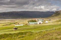 Muli Dorf - Island, Vestfjord. Lizenzfreies Stockbild