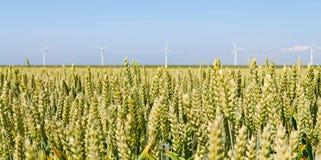 Mulini a vento dell'energia eolica Fotografie Stock Libere da Diritti