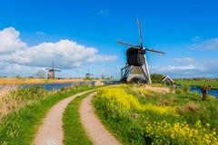 Mulini a vento di Kinderdijk in primavera Immagine Stock