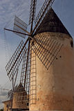 Mulini a vento di Maiorca Fotografie Stock Libere da Diritti