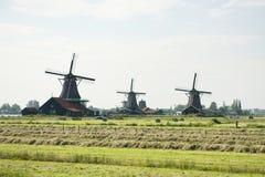 Mulini a vento ed il campo a Zaanse Schans, Olanda Immagini Stock