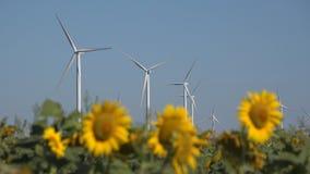 Mulini a vento, generatori eolici, potere del generatore del giacimento di grano di agricoltura, elettricit? fotografia stock libera da diritti