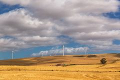 Mulini a vento nella campagna del Sudafrica immagini stock