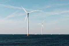 Mulini a vento per la costa olandese con le barche a vela Fotografia Stock Libera da Diritti