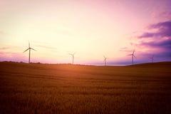Mulini a vento sul campo al tramonto di estate Immagine Stock Libera da Diritti