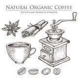 Mulino di caffè, fagiolo, seme, frutta, cannella, anice stellato, tazza Insieme organico naturale caldo della bevanda della caffe Fotografie Stock