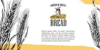 Mulino, giacimento di grano, orecchie Illustrazione dell'incisione Immagine Stock
