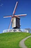 Mulino a vento a Bruges, Belgio Fotografia Stock Libera da Diritti
