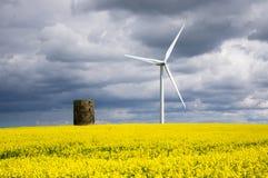 Mulino a vento con il seme di ravizzone Fotografia Stock Libera da Diritti