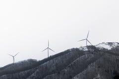 Mulino a vento in Corea Fotografia Stock