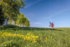 Mulino a vento del mulino di Traebene con i campi verdi Fotografie Stock Libere da Diritti