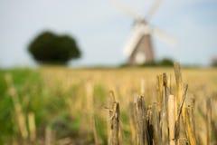 Mulino a vento del raccolto con il giacimento di grano Immagine Stock