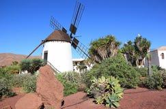 Mulino a vento dell'Antigua (Molino de Antigua). Fuerteventura, isole Canarie, Spagna. Fotografia Stock Libera da Diritti