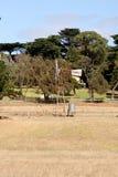 Mulino a vento dell'azienda agricola nell'entroterra Australia a Phillip Island Fotografia Stock Libera da Diritti