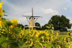 mulino a vento dell'Olanda Immagine Stock Libera da Diritti