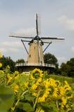 mulino a vento dell'Olanda Fotografia Stock