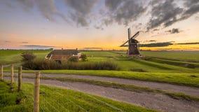 Mulino a vento di legno olandese nel paesaggio erboso della latteria Immagine Stock