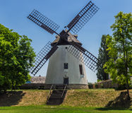 Mulino a vento di Podersdorf Immagine Stock Libera da Diritti