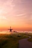 Mulino a vento e cavalli sul pascolo ad alba fotografia stock libera da diritti