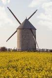 Mulino a vento e seme di ravizzone Fotografia Stock