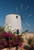 Mulino a vento greco bianco Immagini Stock Libere da Diritti