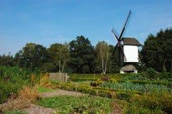 Mulino a vento in natura. immagini stock