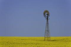 Mulino a vento nel campo giallo Fotografie Stock