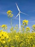 Mulino a vento nel campo giallo Fotografie Stock Libere da Diritti