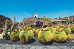 Mulino a vento nel giardino del cactus nel villaggio di Guatiza Immagine Stock Libera da Diritti