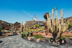 Mulino a vento nel giardino del cactus nel villaggio di Guatiza Fotografie Stock Libere da Diritti