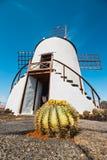 Mulino a vento nel giardino del cactus nel villaggio di Guatiza Immagini Stock
