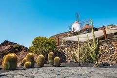 Mulino a vento nel giardino tropicale del cactus nel villaggio di Guatiza, attrazione popolare a Lanzarote Fotografia Stock