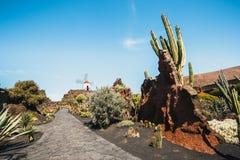 Mulino a vento nel giardino tropicale del cactus nel villaggio di Guatiza, attrazione popolare a Lanzarote Immagini Stock