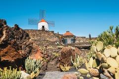 Mulino a vento nel giardino tropicale del cactus nel villaggio di Guatiza, attrazione popolare a Lanzarote Immagini Stock Libere da Diritti