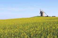 Mulino a vento in Normandia Fotografie Stock Libere da Diritti
