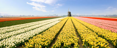 Mulino a vento Olanda fotografia stock