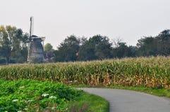 Mulino a vento olandese nei colori di autunno Fotografia Stock Libera da Diritti