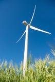 Mulino a vento per produzione di energia elettrica nel campo di grano verde Fotografie Stock Libere da Diritti