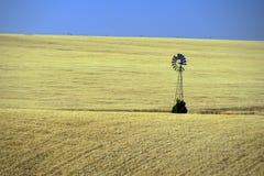 Mulino a vento solo nel giacimento di grano, Washington orientale Fotografia Stock Libera da Diritti