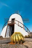 Mulino a vento sul fondo del cielo blu nel giardino del cactus, villaggio di Guatiza, Lanzarote Immagini Stock Libere da Diritti