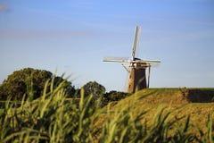Mulino a vento tipico nei Paesi Bassi Fotografia Stock