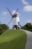 Mulino a vento tradizionale del Belgio Immagine Stock Libera da Diritti