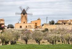 mulino a vento tradizionale in Mallorca, Isole Baleari Fotografia Stock Libera da Diritti