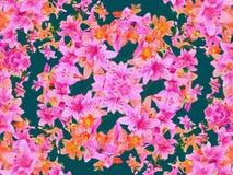 Mulitcolored Kwiecisty wzór Zdjęcia Stock