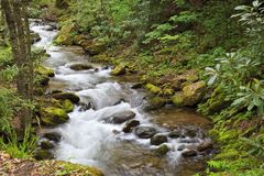 Pretty Mountain Creek in North Carolina in the Springtime stock photography