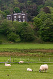 mull scotland arkivbilder