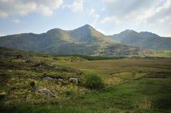 Mullaghanattin Mountain Royalty Free Stock Image
