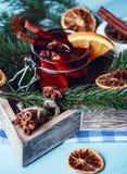 Mulled вино в стекле Вино рождества горячее обдумыванное в стекле с специями и цитрусовыми фруктами Обдумыванное вино с циннамоно Стоковое Изображение RF