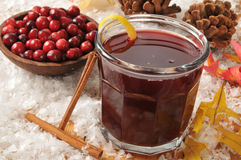 Mulled cranberry juice Royalty Free Stock Image