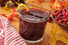 Mulled cranberry juice Royalty Free Stock Photo
